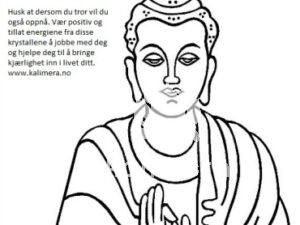 Buddha kjærlighet og energi sett-0