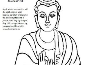 Buddha rikdom og suksess sett-0