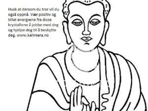 Buddha beskyttelses sett-0